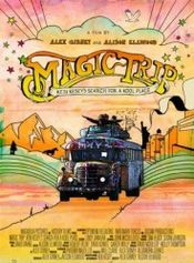 Affiche Magic Trip