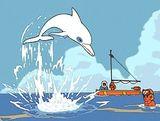 Affiche Oum le dauphin