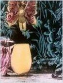 Affiche La chrysalide et le papillon