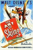 Affiche Leçon de ski
