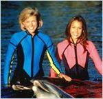 Affiche Les Nouvelles aventures de Flipper le dauphin