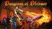 Jaquette Dungeons of Dredmor
