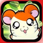 Jaquette Hamtaro : Petits Hamsters, Grandes Aventures