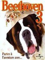 Affiche Beethoven 3