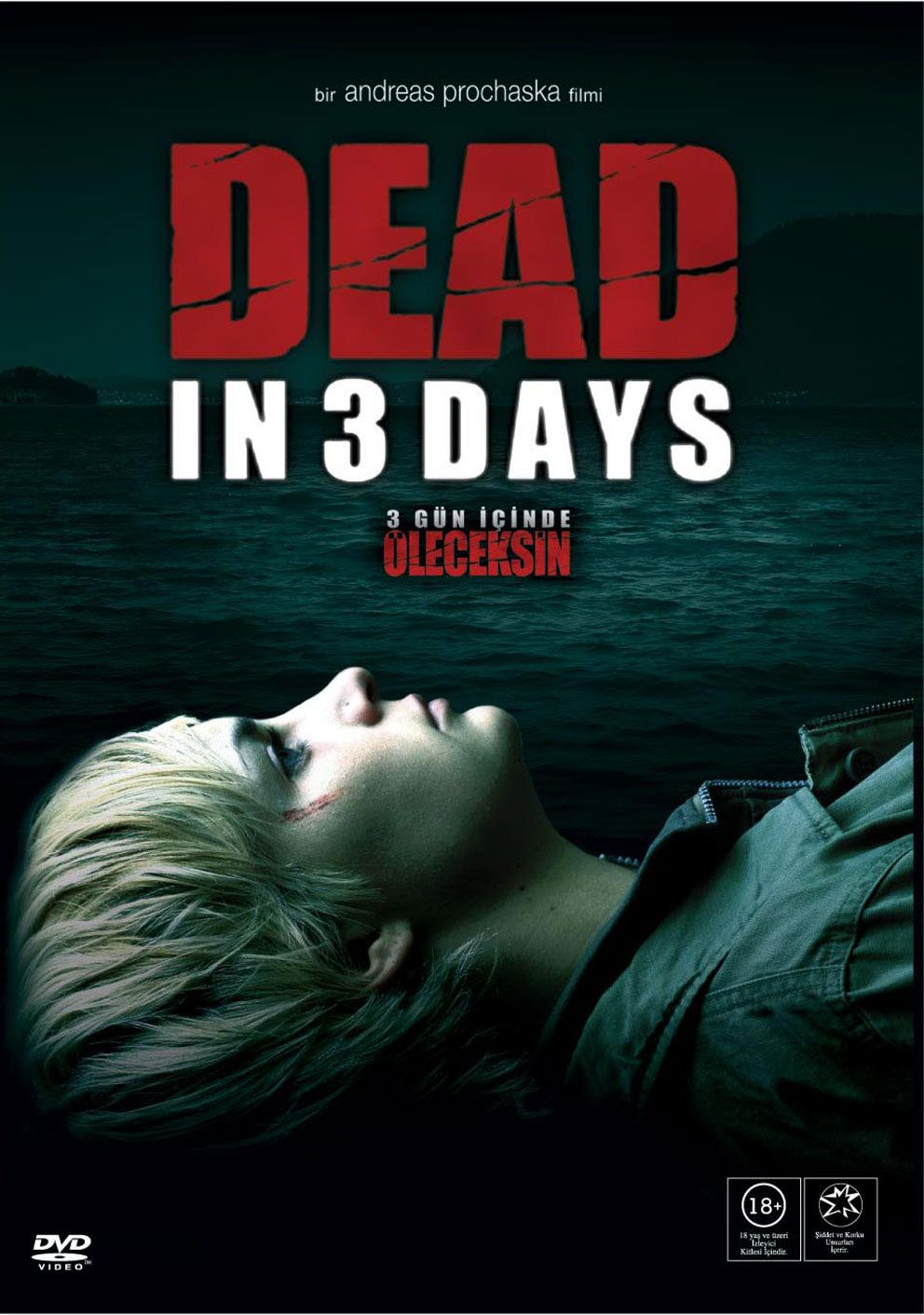Dead in 3 Days FRENCH Movie Poster