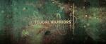 Affiche Sucker Punch : Feudal Warriors