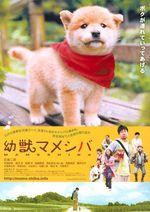 Affiche Mameshiba Cubbish Puppy