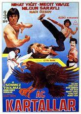 Affiche Turkish Bruce Lee