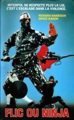 Affiche Flic ou Ninja