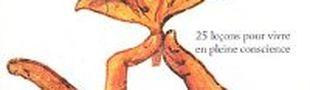 Couverture Méditer jour après jour : 25 leçons pour vivre en pleine conscience