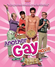 Affiche Another Gay Movie