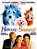 Affiche Hercule & Sherlock