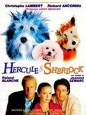 Affiche Hercule et Sherlock