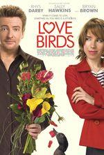 Affiche Love birds
