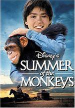 Affiche Malin comme un singe