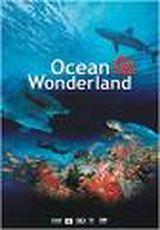 Affiche Ocean wonderland 3d