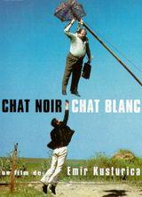 Affiche Chat noir, Chat blanc
