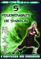 Affiche Les 5 foudroyants de Shaolin