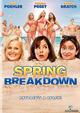 Affiche Spring Breakdown