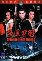 Affiche Five Element Ninjas