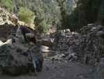 Affiche Le vrai visage des Talibans - Un autre regard sur les Talibans