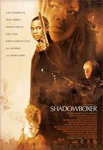 Affiche Shadowboxer