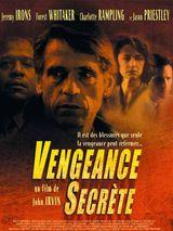 Affiche Vengeance secrète