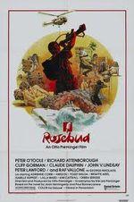 Affiche Rosebud