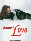 Affiche Animal Love