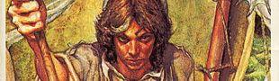 Couverture Le Sorcier Majdar - Astre d'or, tome 1