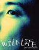 Affiche Wild Life