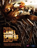 Affiche Camel Spiders