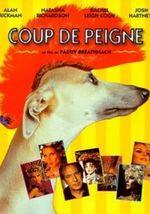 Affiche Coup de peigne