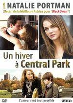 Affiche Un hiver à Central Park