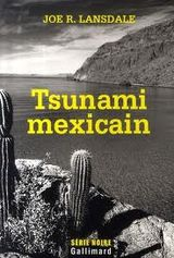 Couverture Tsunami mexicain