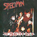Pochette The Beauty of Poisin (Single)