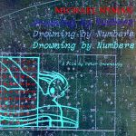 Pochette Drowning by Numbers (OST)