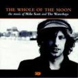 Pochette The Whole of the Moon