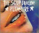 Pochette Pleasure (Single)