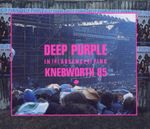 Pochette In the Absence of Pink: Knebworth 85 (Live)