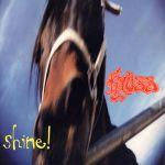 Pochette Shine! (Single)