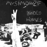 Pochette Blinded Horses