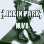 Pochette Numb
