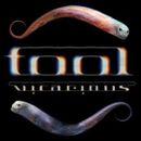 Pochette Vicarious (Single)