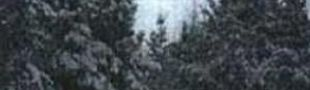 Pochette Snowland