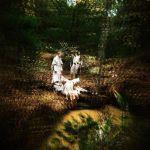 Pochette Fortune - EP (EP)