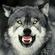 Avatar Wolfhere