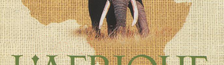 Illustration Africa