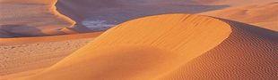 Illustration Top BD dans le désert.