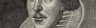 Illustration Top 15 Films d'après William Shakespeare